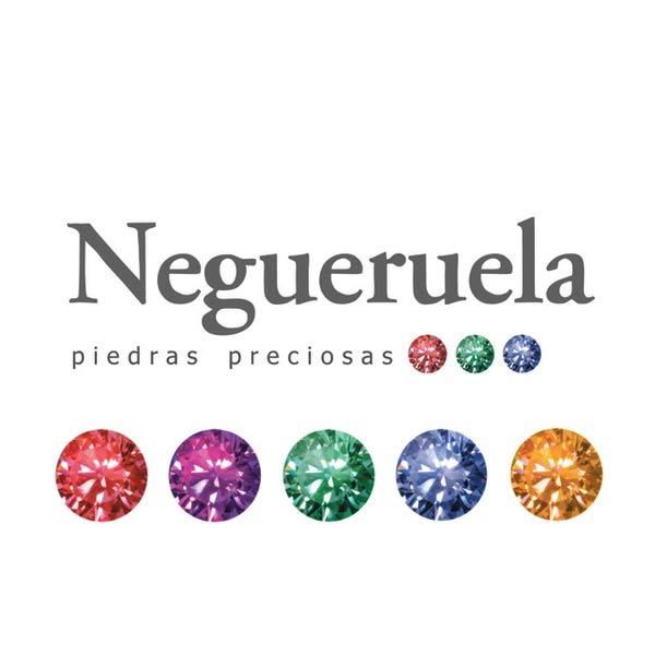 Antonio Negueruela